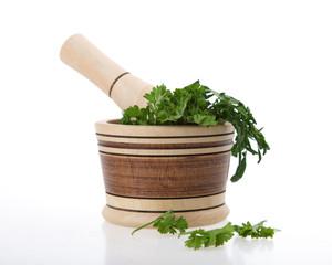 macerator cilantro