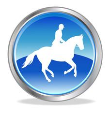 Pferdesport - 9