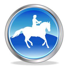 Pferdesport - 10