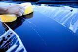 Fototapety hand hold sponge over the car for washing