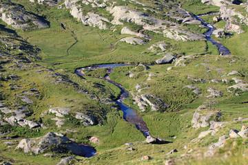 torrente nella piana del Nivolet -  Valsavaranche