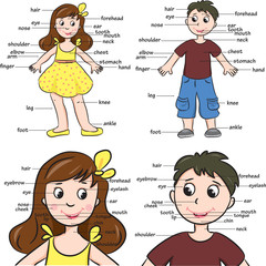Cartoon boy and girl. Vocabulary of body parts.