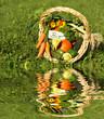 Bio-Gemüse aus eigenem Garten, Biological vegetables