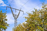 High-voltage power line over autumnal apple garden