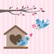 love birds valentine greeting design