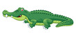 illustration of crocodile vector