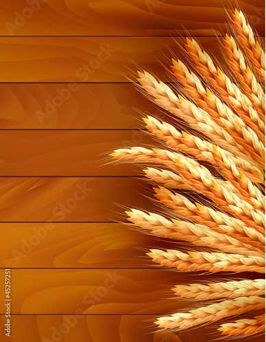 Ears of wheat on wooden background. Vector.