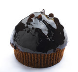 Eatable chocolate muffin cupcake isolates poster