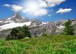 Beautiful mountain Zinalrothorn - Swiss alps