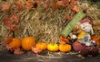 Autumn decoration with scarecrow