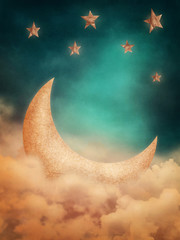 Moon and stars © Elena Schweitzer