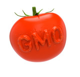 GMO tomato. Genetically modified food concept poster