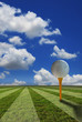 golf ball on yellow tee and green grass background