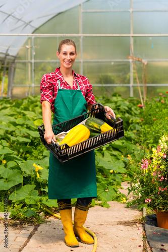 Gärtnerin in ihrer Gärtnerei mit Gemüse in Kiste
