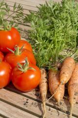 Freshly dug organic carrorts and tomatoes