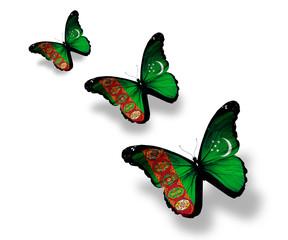 Three Turkmenistan flag butterflies, isolated on white