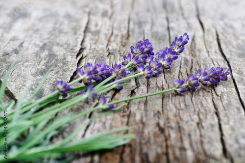 Lavendelstrauß auf verwittertem Holz