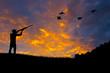 Leinwandbild Motiv Bird Hunting Silhouette