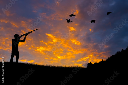Bird Hunting Silhouette - 45283454