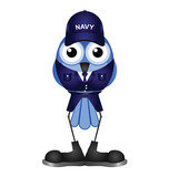 Bird sailor in uniform isolated on white background