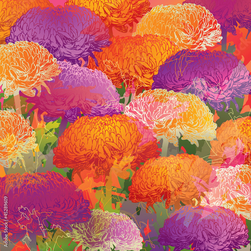 Chrysanthemums. Autumn colorful background. Vector illustration.