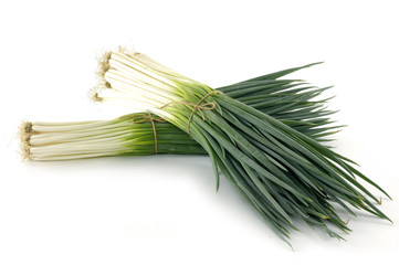 two bunch of spring onions