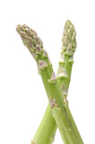 Pair of fresh asparagus