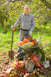 man with vegetables harvest