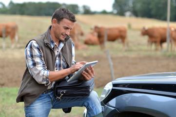 Breeder in farm using digital tablet