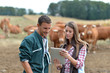 Leinwanddruck Bild - Farmer and woman in cow field using tablet