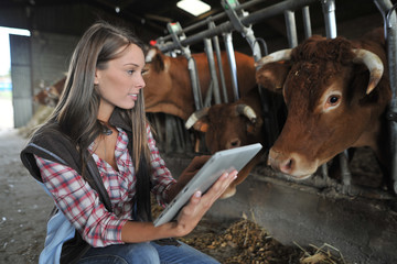 Woman in barn using electronic tablet