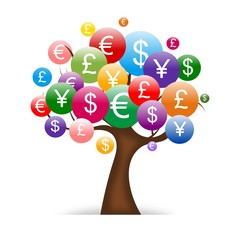 international money tree isolated on White background