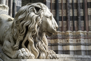 Lion statue in the cathedral of San Lorenzo in Genoa
