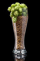 Beer glass with ingredients
