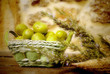 fig crop