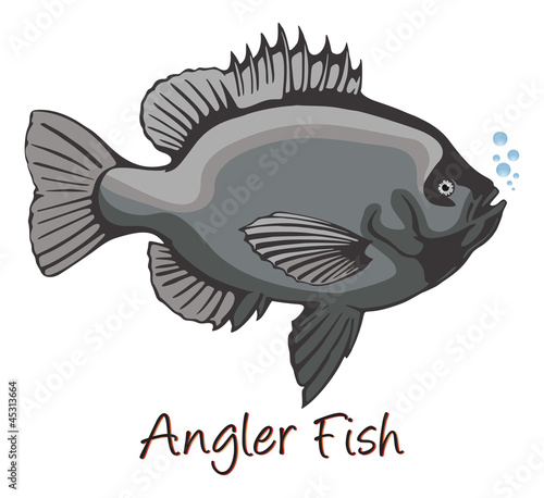Anglerfish, Color Illustration