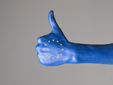 Hand painted with the flag of European Community  expressing pos