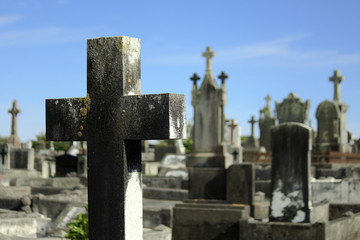 Friedhof Neuseeland
