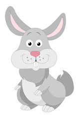 Cute grey rabbit, illustration
