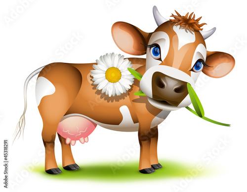 Foto op Canvas Boerderij Little Jersey cow eating daisy