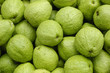 green guava background