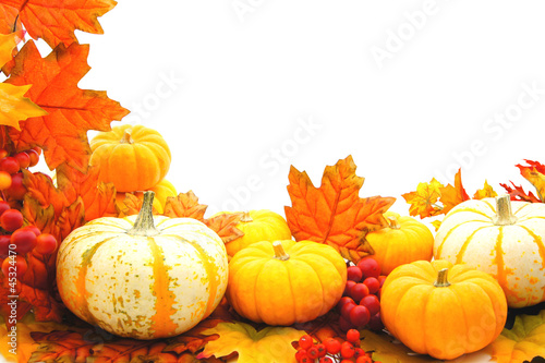 Border or frame of pumpkins and vibrant autumn leaves