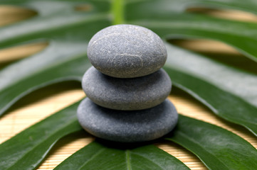 Stack of stone with green leaf