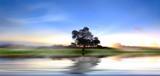 Fototapeta rzeka - pejzaż - Dziki pejzaż