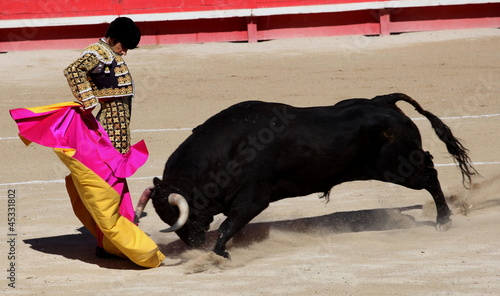 Leinwanddruck Bild solo de Jose Tomas, Nimes 2012