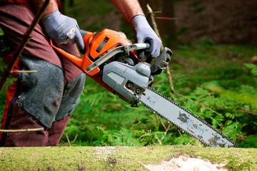 Waldarbeiter schneidet liegendes Holz - Entasten