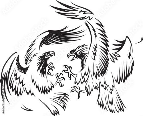 动物头飞行鸟类黑色