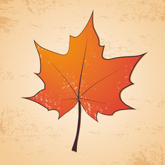 Autumn leaf grunge background