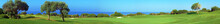 Panorama of Golf field, sea and olives