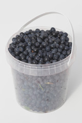 blueberries in a plastic container